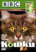 BBC: Кошки (1991)