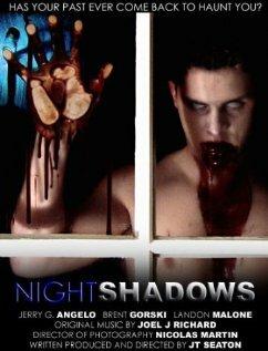 Тени  ночи (2004)