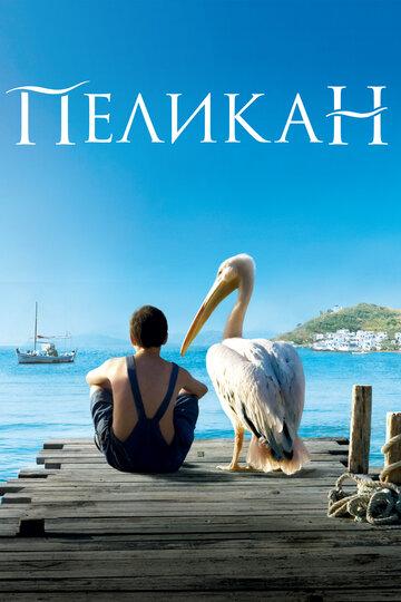 Пеликан полный фильм смотреть онлайн