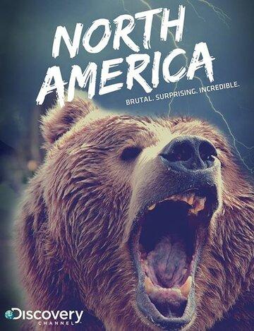 Discovery: Северная Америка