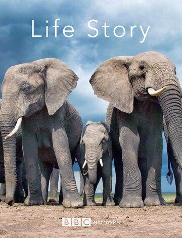 История жизни (2014)