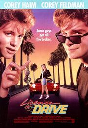 Водительские права (1988)