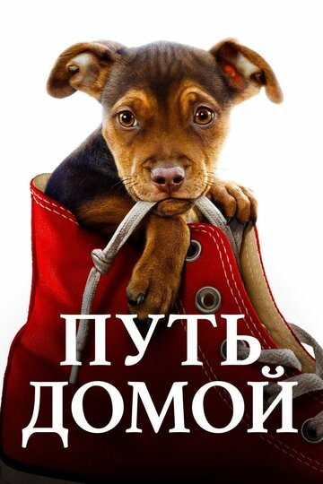 Путь домой (A Dog's Way Home2019)