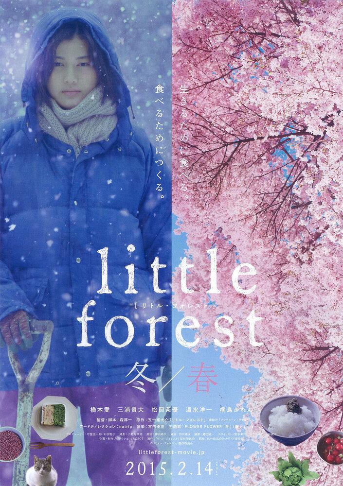 Небольшой лес: Зима и весна дорама