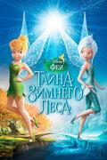 Феи: Тайна зимнего леса (2012)