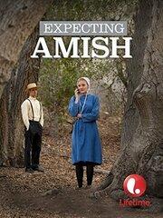 Ожидая амишей (2014)