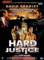Жестокая справедливость (1995)