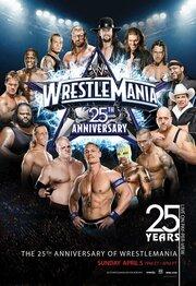 WWE РестлМания 25 (2009)