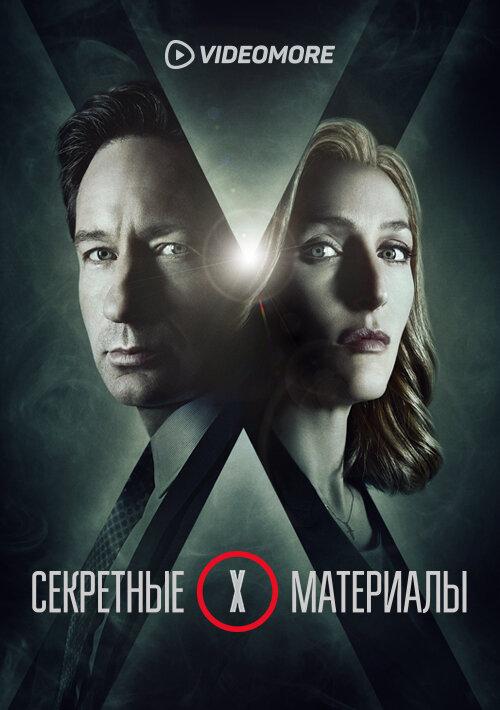 Секретные материалы (2015)