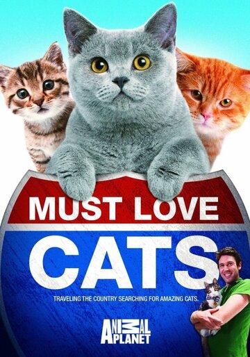 Кошек не любить нельзя 2011 | МоеКино