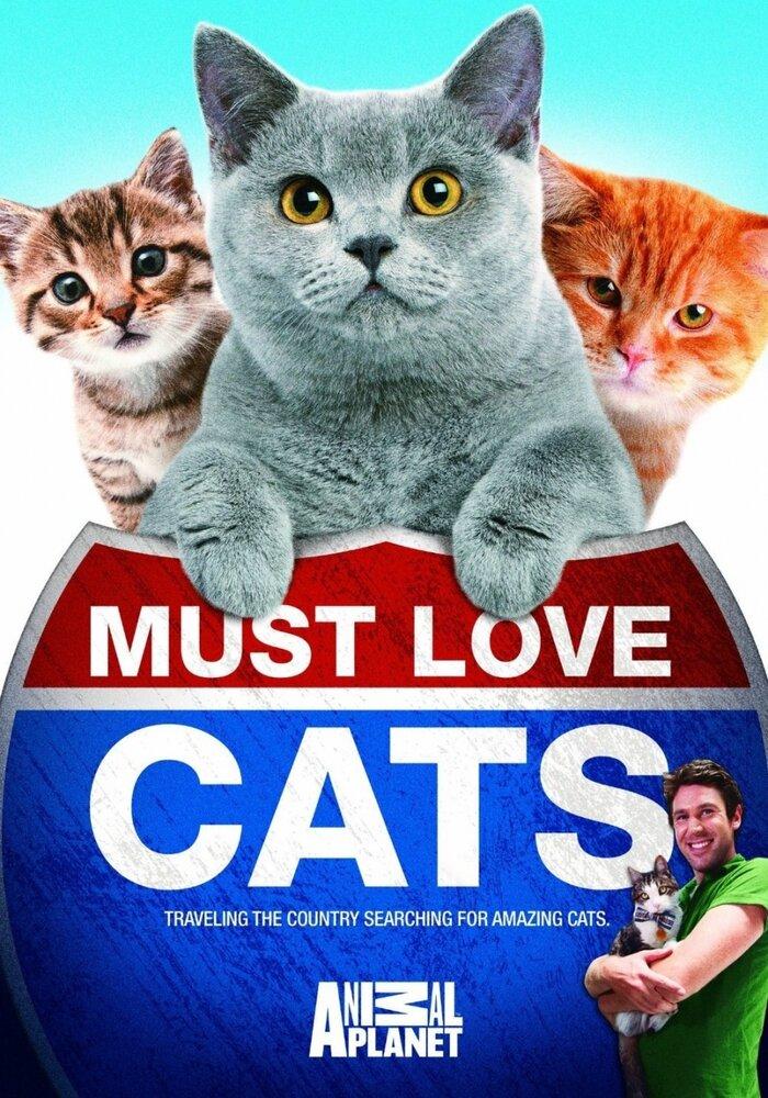 Сериалы с участием котов