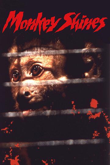 Яндекс порно фильм с обезьяной