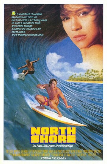 Северный берег (1987)