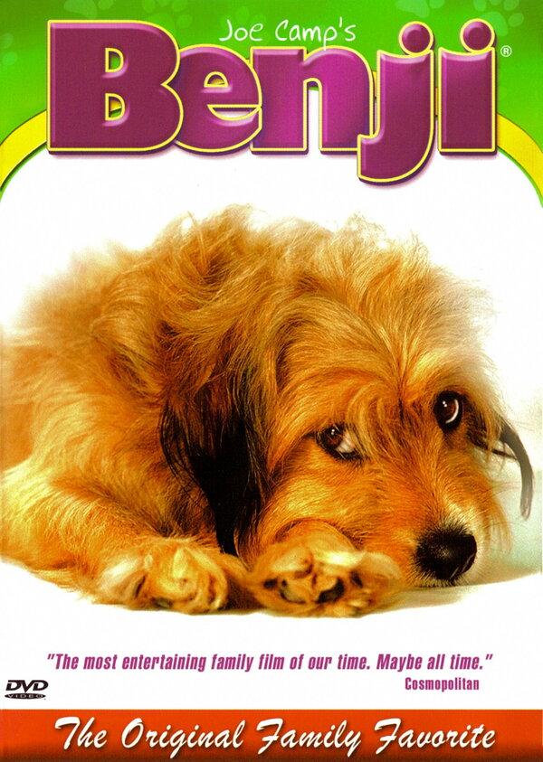 80 иностранных фильмов и мультфильмов про собак на любой вкус