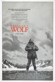 Не кричи «Волки!»