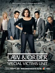 Смотреть онлайн Закон и порядок. Специальный корпус