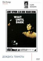 Дождись темноты (1967)