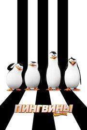 Смотреть онлайн Пингвины Мадагаскара