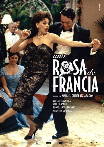 Роза Франции