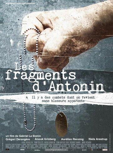Фрагменты Антонина (2006)