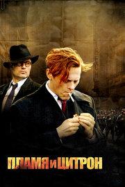 Пламя и Цитрон (2008)