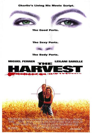 Урожай (1992)