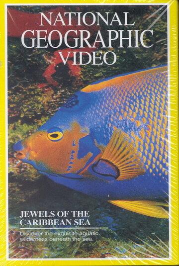 National Geographic: Жемчужины Карибского моря (1994)