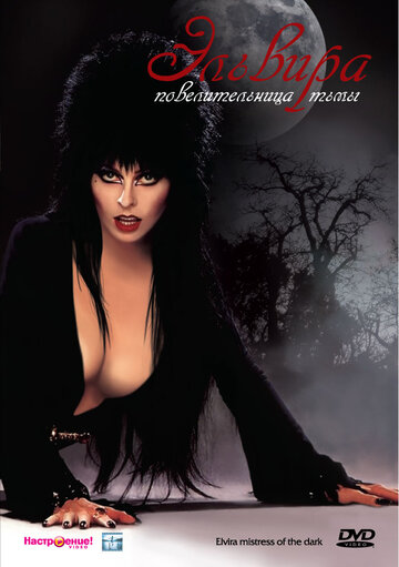 �������: �������������� ���� (Elvira: Mistress of the Dark)