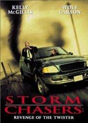 Погоня за смерчем (1998)