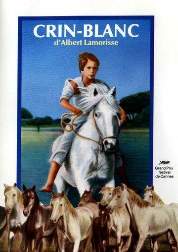 Белая грива: Дикая лошадь (Crin blanc: Le cheval sauvage)