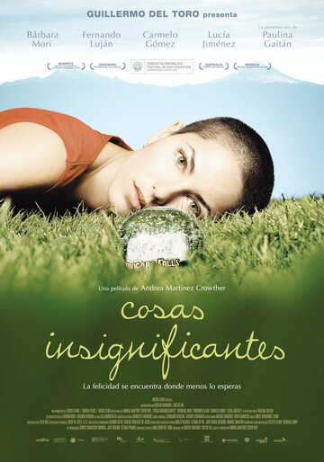 Неважные вещи (2008) — отзывы и рейтинг фильма