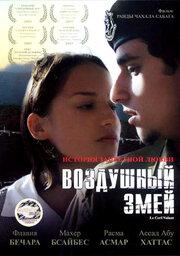 Воздушный змей (2003)