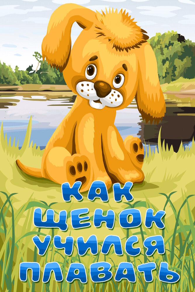 KP ID КиноПоиск 260144