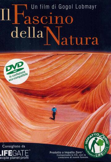 Очарование природы 1996