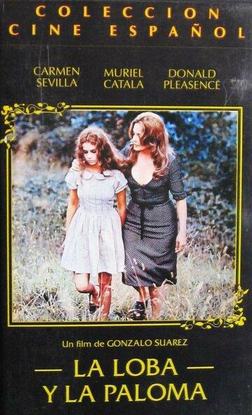Волк и голубь (1974)
