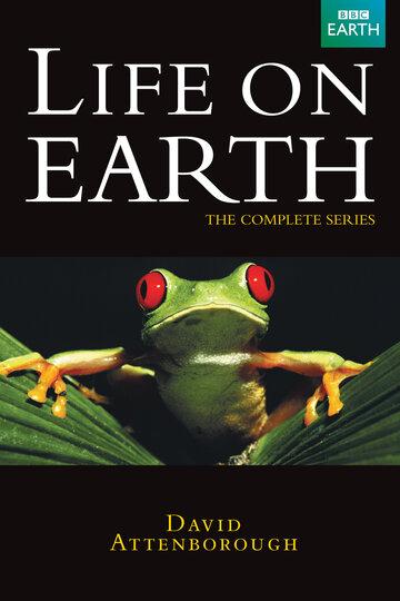 Жизнь на Земле (1 сезон)