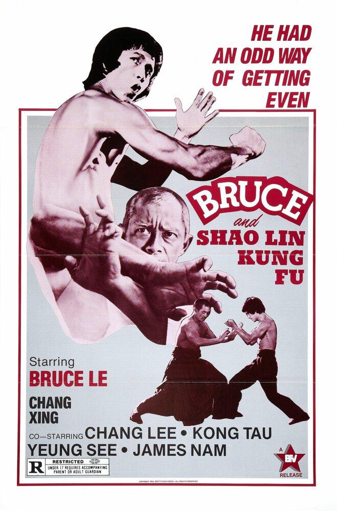 Скачать дораму Брюс и кунг-фу монастыря Шао-Линь Da mo tie zhi gong