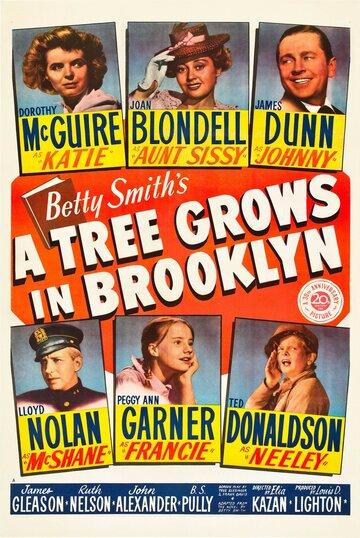 Дерево растет в Бруклине