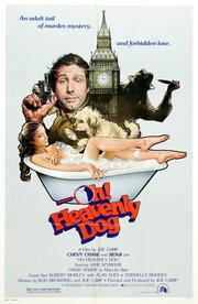 О, божественный пес! (1980)