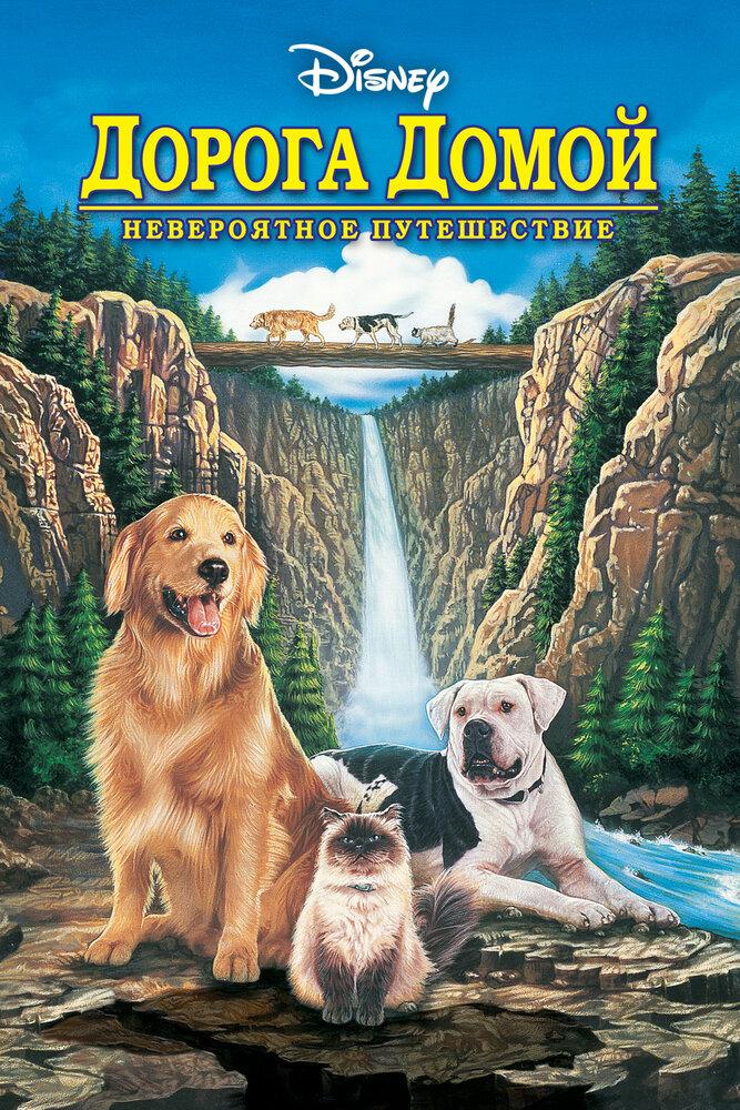 Дорога домой: Невероятное путешествие (1992) смотреть онлайн