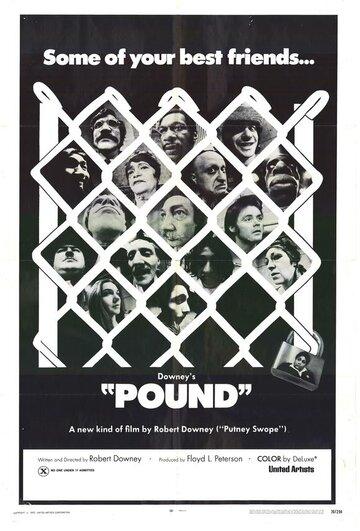 Загон (Pound)
