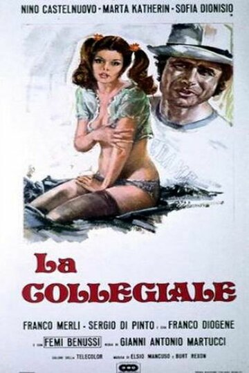 Выпускница колледжа (1975)