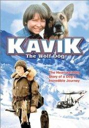 Смотреть онлайн Мужество Кэвика, собака-волк