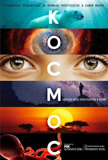 ������: ������������ � ����� (Cosmos: A Spacetime Odyssey)