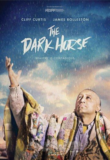 Тёмная лошадка (2014) полный фильм онлайн