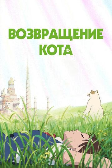 Кино Зеленые поля