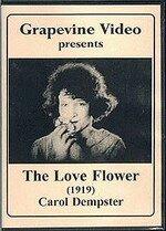 Цветок любви (1920)