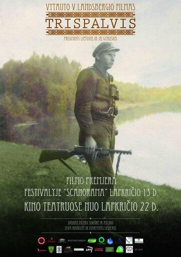 Триколор (2013) полный фильм онлайн
