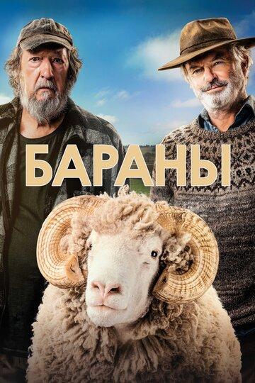 Бараны (2020)