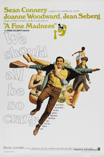 Прекрасное безумие (1966)